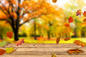 wooden table in front of a colorful autumn landscape