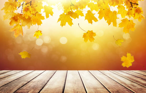 Wooden table top on blur golden autumn background. stock photo