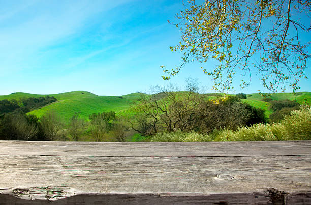 Wooden table with nature background stock photo