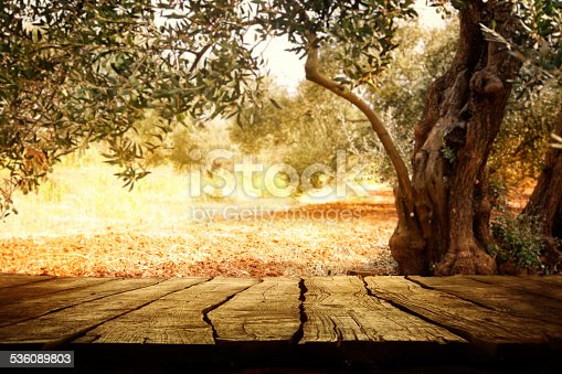 989111446istockphoto Wooden table with olive tree 536089803