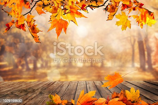 istock Wooden table with orange leaves autumn background 1029169532