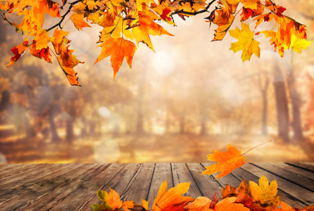 Wooden table with orange leaves autumn background stock photo