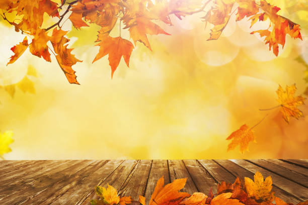 Wooden table with orange leaves autumn background Wooden table with orange fall  leaves, autumn natural background fall background stock pictures, royalty-free photos & images