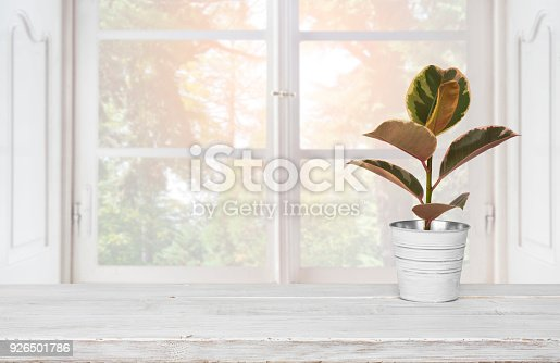 885452818istockphoto Wooden table with plant pot on blurred background of window 926501786
