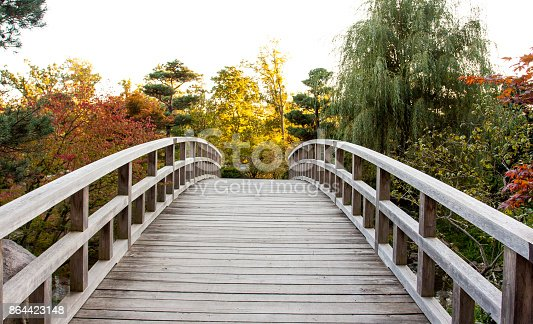 This wooden bridge, maded only for pedestrians, lead you to a beautiful zen garden during autumn time, with yellow leaves on the branches.