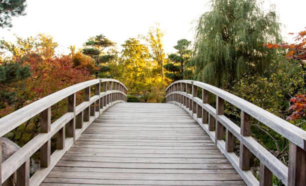 puente de tablas de madera, con forma circular perfecta, conduce a un jardín de otoño. - chicago illinois fotografías e imágenes de stock