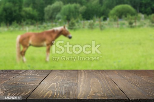 Wooden tabletop and blurred rural background of cows on green field and meadow with grass. Display for meat and milk products. Horsemeat Food of Kazakhs, Tatars, Kyrgyz and Uzbeks.