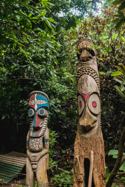 Wooden tam tams or split gongs. Fanla village,Ambrym,  Vanuatu. Wooden tam tams or split gongs sculpted out of tree trunks representative of the local men in Fanla village,Ambrym island, Malampa prov, Vanuatu. vanuatu stock pictures, royalty-free photos & images