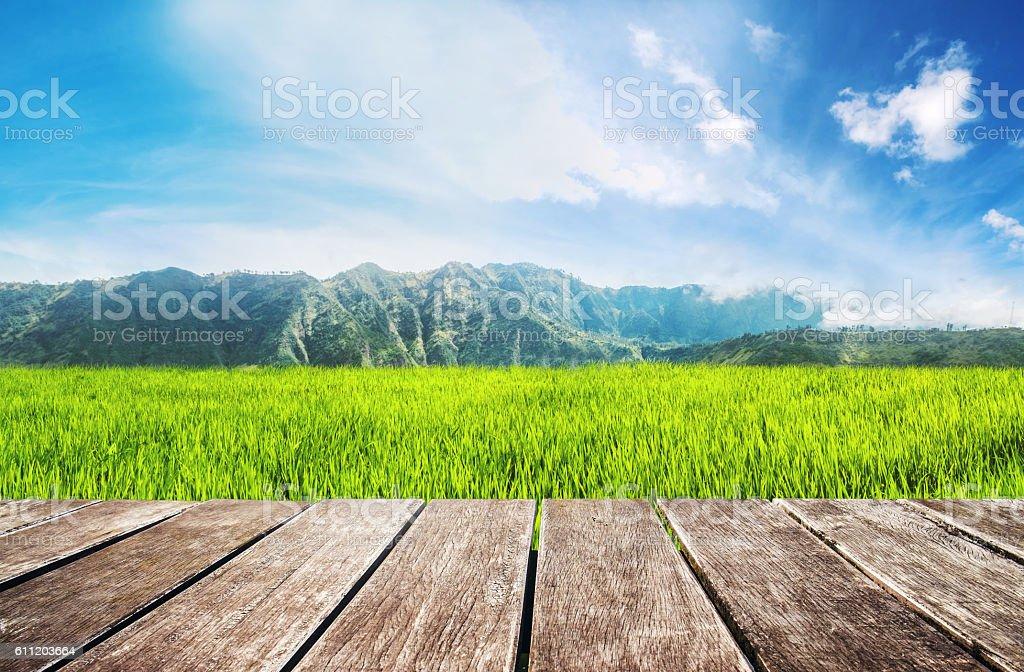 Terraza De Madera Con Arroz Campo Verde Y El Cielo Azul Foto