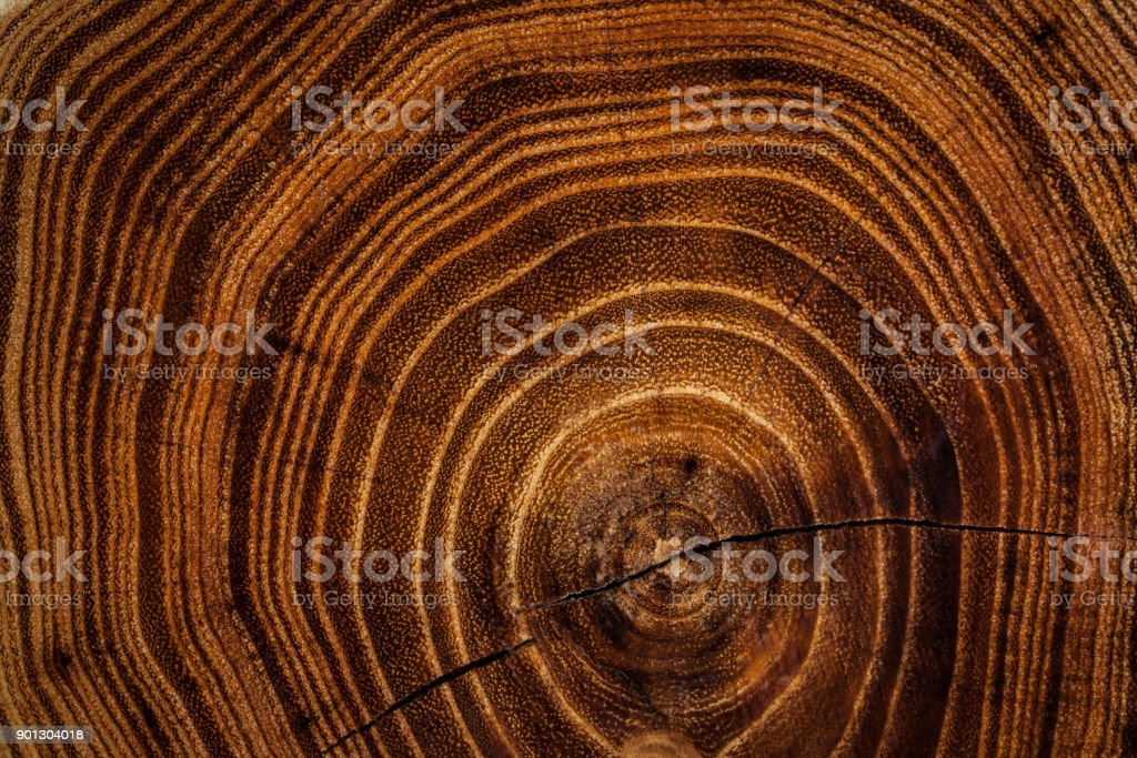 Fondo de textura de madera - foto de stock