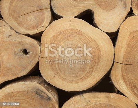 465559373 istock photo Wooden texture 481436360