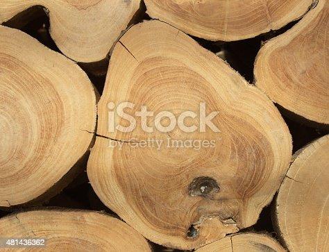 465559373 istock photo Wooden texture 481436362