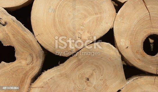 465559373 istock photo Wooden texture 481436364