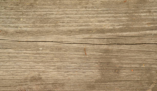 Oak Wood Texture ~ Royalty free oak wood grain pictures images and stock