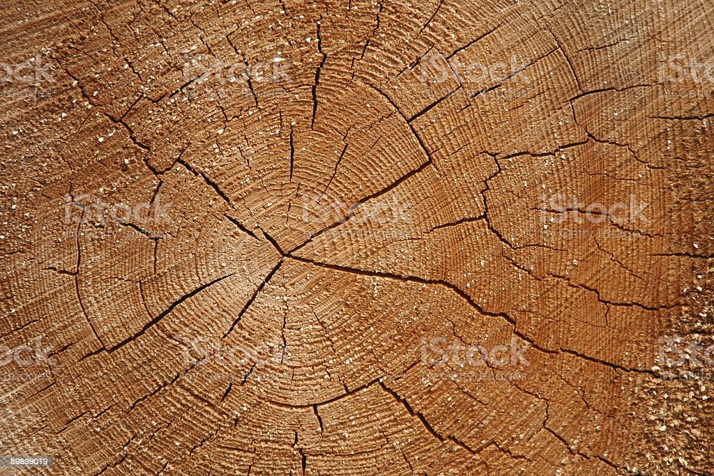 Wooden texture # 2 royalty-free stock photo