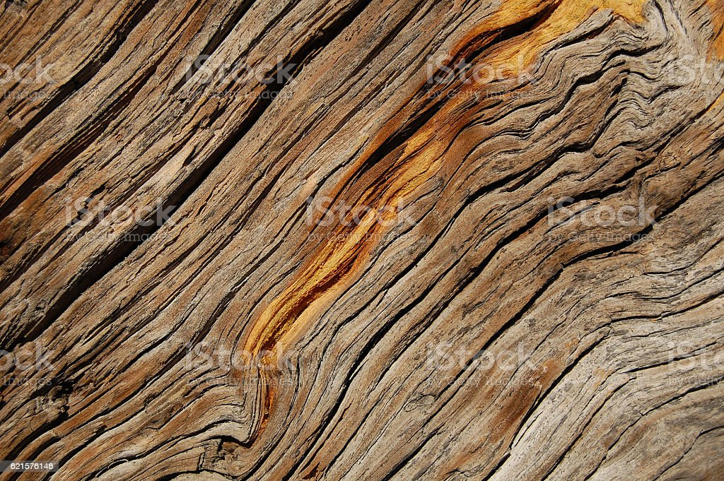 Wooden texture. vintage weathered wood background for design photo libre de droits