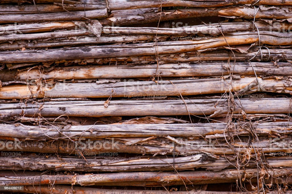 Wooden textured background of vertical branches - Royalty-free Abstract Stock Photo