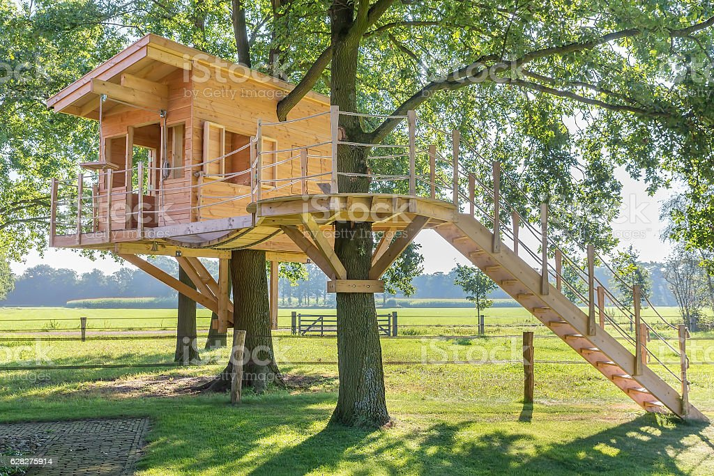 Wooden Tree House In Oak Tree With Grass Stock Photo ...