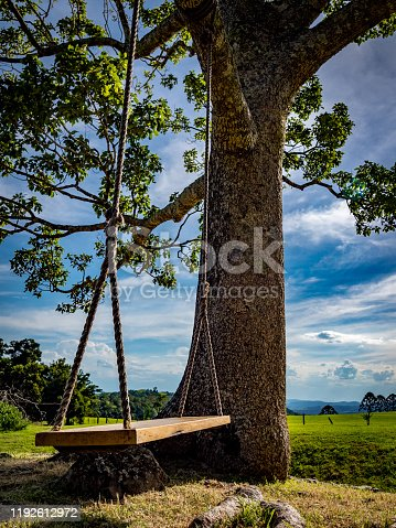 A simple wooden tree swing out in the paddock