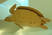 Wooden turtle model floating in the air