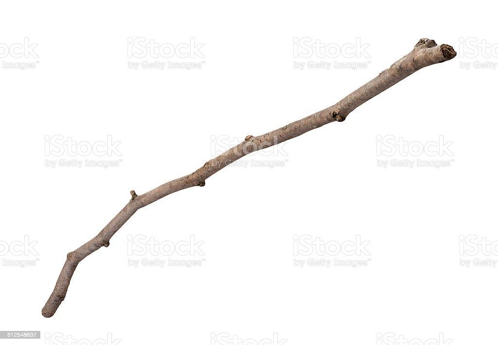 Ramita de madera aislada - foto de stock