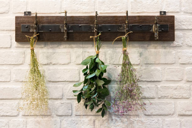 Wooden vintage style Hanger Wooden vintage style Hanger / Hooks  on white brick wall decorated with dried bouquets in a country style home. dried plant stock pictures, royalty-free photos & images