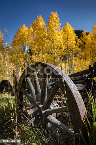 An antique wagon wheel in an aspen grove in autumn
