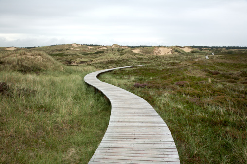 wooden walking path on cloudy sky