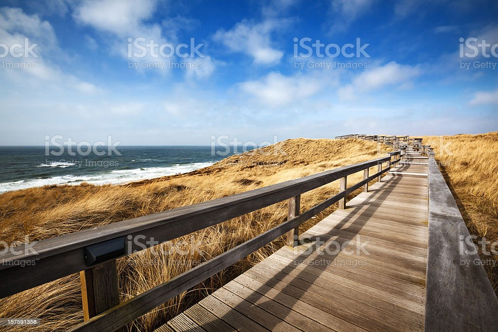 Wooden Walking Path stock photo