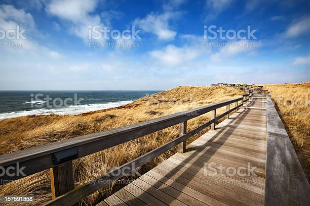 Photo of Wooden Walking Path