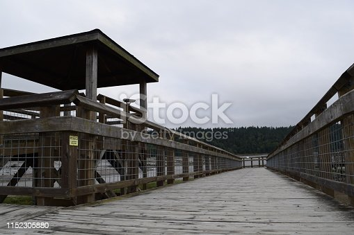 istock Wooden Walkway At Billy Frank Jr. Nisqually National Wildlife Refuge 1152305880