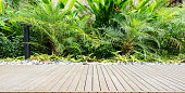 Wooden walkway of tropical garden