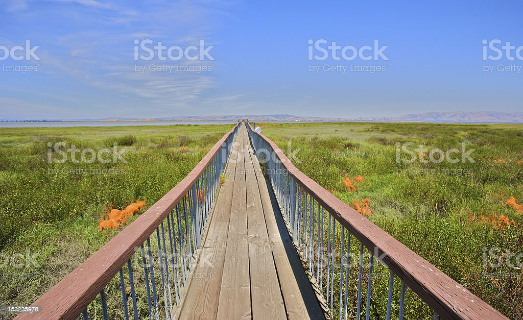 Wooden Walkway Over Natural Preserve stock photo