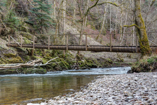 Wooden walkway to cross the Wutach river. stock photo
