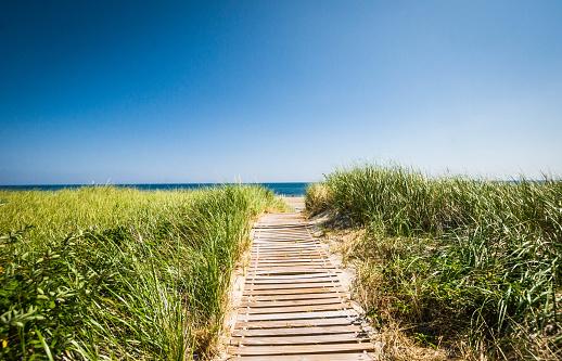 A wooden walkway leads through the tall dune grass to the sandy ocean beach beyond.