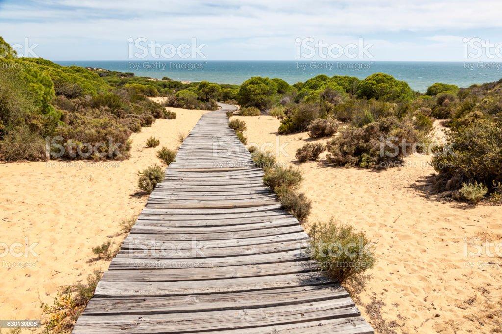 Hölzernen Gehweg zum Strand – Foto