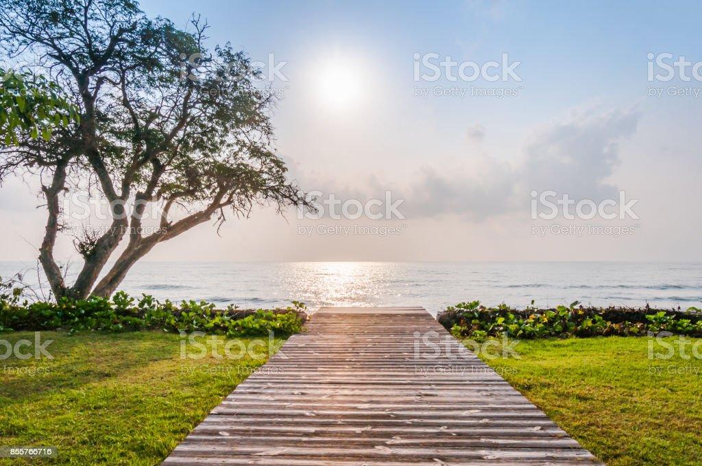 wooden walkway to the beah stock photo