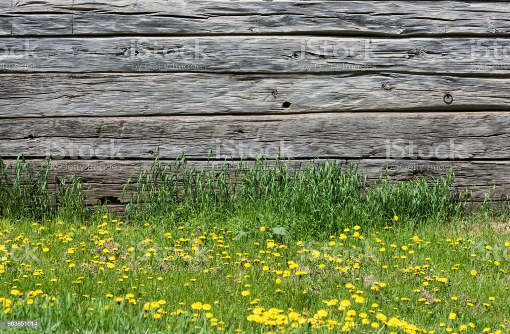 Wooden wall background and grass - Royalty-free Abandoned Stock Photo