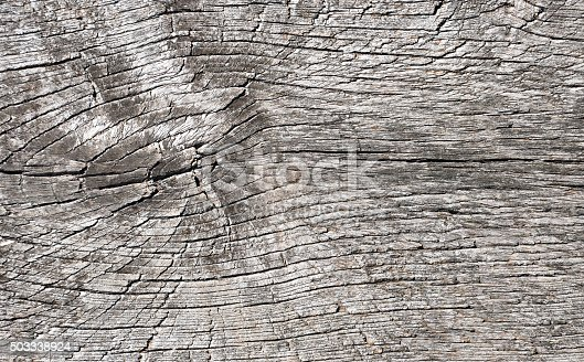 471504772 istock photo wooden wall background 503338924