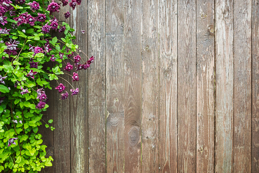 Wooden wall with decorative flowers