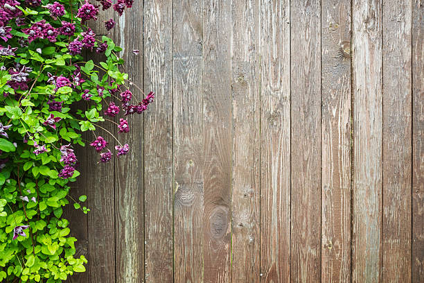 Royalty Free Wooden Fence Pictures Images And Stock