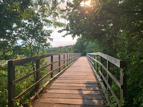 A wooden bridge along a forest walkway