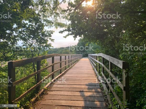 Photo of Woodland Bridge