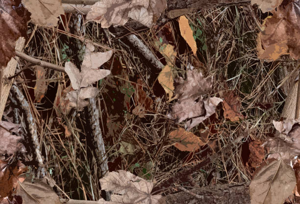 A Woodland Camouflage Pattern for hunting purposes A Woodland Camouflage Pattern for hunting and military purposes camouflage stock pictures, royalty-free photos & images