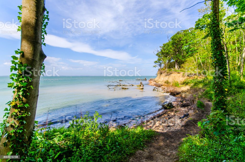 Woodland Cove stock photo