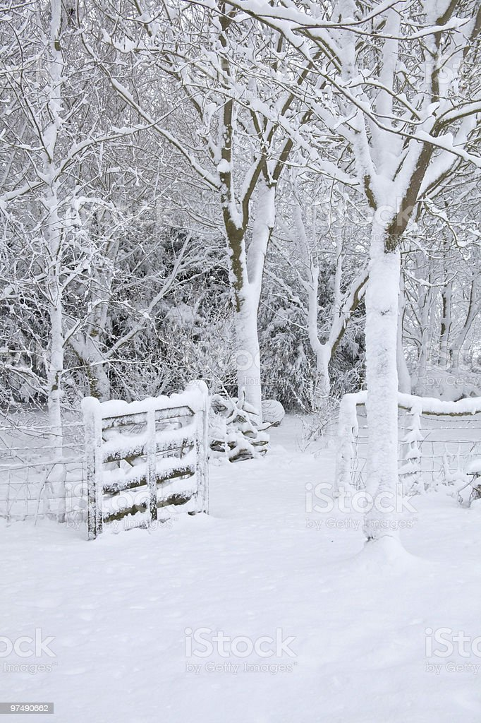 Woodland gate covered in snow royalty-free stock photo