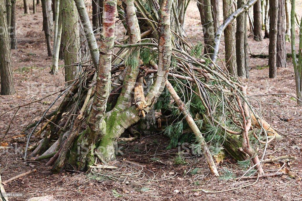 Woodland Shelter stock photo