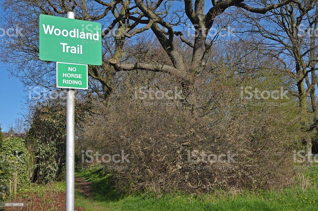 Woodland Trail royalty-free stock photo