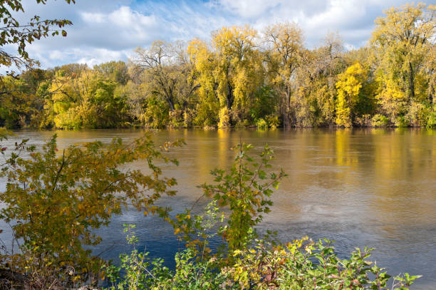 Woodlands in Autumn Along Minnesota River stock photo