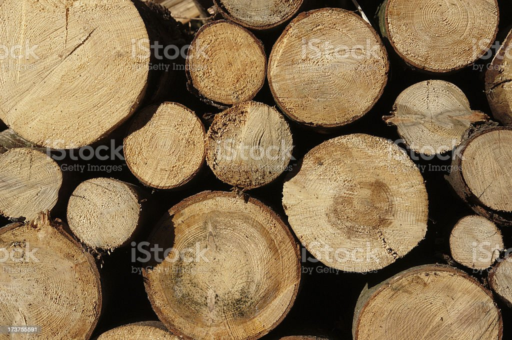 woodpile royalty-free stock photo